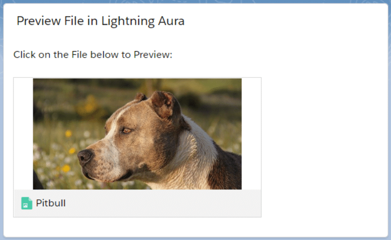 Preview Files in Lightning Aura Components