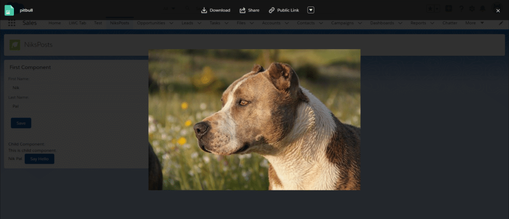 File Preview in Lightning Aura Components