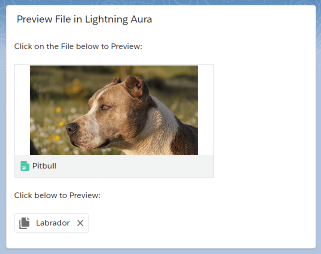 Preview File in Lightning Aura Components